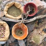 pots fumigation