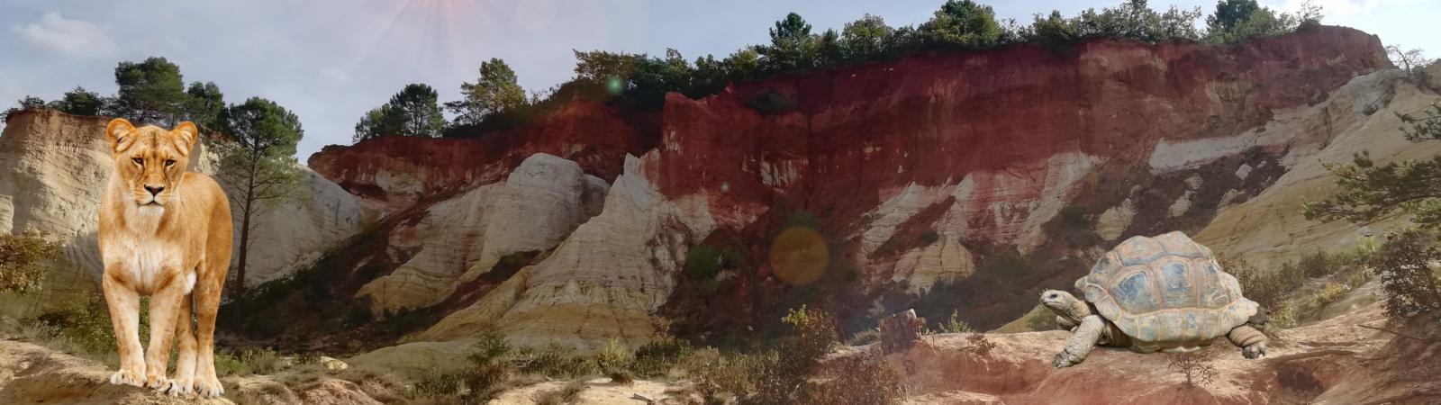 colorado provencal avec animaux et filtres